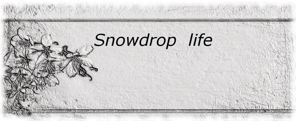 Snowdrop life
